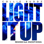 Light It Up (Remix Bundle) de Collie Buddz