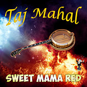 Sweet Mama Red de Taj Mahal