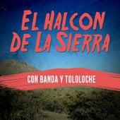 El Halcon de la Sierra: Con Banda y Tololoche by El Halcon De La Sierra