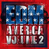 EDM America 2014 - Vol. 2 - EP by Various Artists