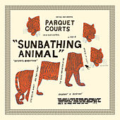 Sunbathing Animal de Parquet Courts