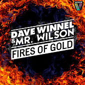 Fires Of Gold by Dave Winnel