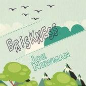 Briskness by Joe Newman