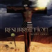 Resurrection de Swamp Dogg