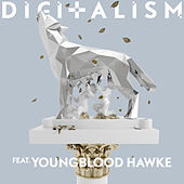 Wolves (feat. Youngblood Hawke) by Digitalism