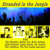 Stranded in the Jungle de Various Artists