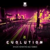 Shogun Audio Evolution EP Series 4 by Various Artists