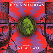 The Incredible Expanding Universe Of Brain Shadows Volumes 1 & 2 von Various Artists