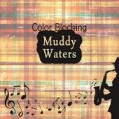 Color Blocking de Muddy Waters