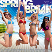 Spring Break 2014 de Various Artists