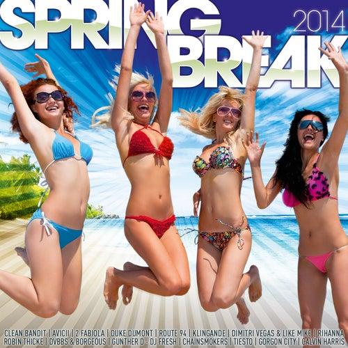 Spring Break 2014 de Various Artists
