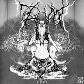ZHM [Remixes] von Mustard Pimp