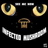 See Me Now by Infected Mushroom