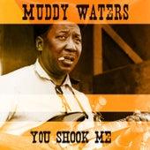 You Shook Me di Muddy Waters