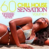 CHILL HOUSE SENSATION, Vol. 6 - 60 Fantastic Summer Tunes by Various Artists