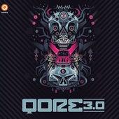 QORE 3.0 (Mixed Version) de Various Artists