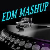 EDM Mashup! (The Best Electro House, Electronic Dance, EDM, Techno, House & Progressive Trance) von Various Artists