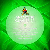 Antarctic Glacier - Ep by Various Artists