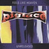 Feels Like Heaven...Sounds Like Shit! - Unreleased by Pigface