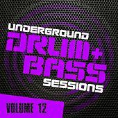 Underground Drum & Bass Sessions Vol. 12 - EP de Various Artists