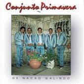 De Nacho Galindo de Conjunto Primavera