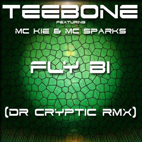 Fly Bi (feat. Mc Kie & Sparks) by Teebone