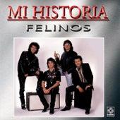 Felinos - Mi Historia by Felinos