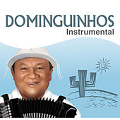 Dominguinhos Instrumental von Dominguinhos