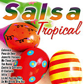 Salsa Tropical by Various Artists