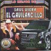 Lo Mejor De by Saul Viera el Gavilancillo