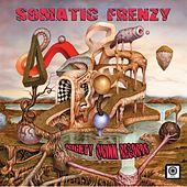 Somatic Frenzy - EP di Various Artists