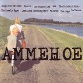 Ammehoelahop by Various Artists