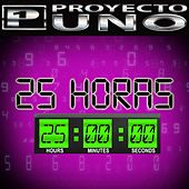 25 Horas de Proyecto Uno