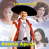 Las Morenas De Mi Vida by Antonio Aguilar