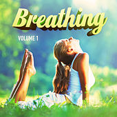 Just Breath, Vol. 1 (25 Songs of Relaxation Music to Ease the Mind) by Various Artists