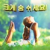 크게 숨 쉬세요! , Vol. 1  (마음을 편하게 가라앉히는 음악) by Various Artists