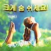 크게 숨 쉬세요! , Vol. 2 (마음을 편하게 가라앉히는 음악) by Various Artists