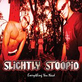 Everything You Need von Slightly Stoopid