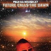 Future Calls The Dawn Sweet Frosti Extended de Felix Da Housecat