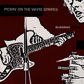 Pickin' On The White Stripe: A Bluegrass Tribute - Banjo Army for a Bluegrass Nation by Pickin' On