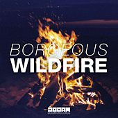 Wildfire by Borgeous
