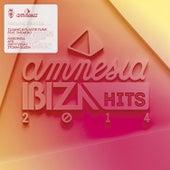 Amnesia Ibiza Hits 2014 de Various Artists