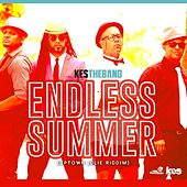 Endless Summer (feat. Kes The Band) by Ricky Blaze