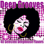 Deep Grooves (40 Selected Deephouse Flavors) by Various Artists