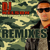 The Flow Is Back by DJ Nelson