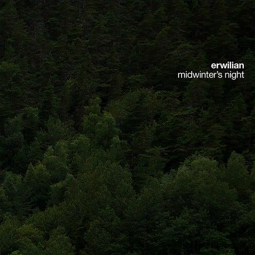 Midwinter's Night by Erwilian