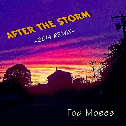 After the Storm (Remix) by Tod Moses