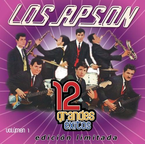 12 Grandes exitos Vol. 1 by Los Apson