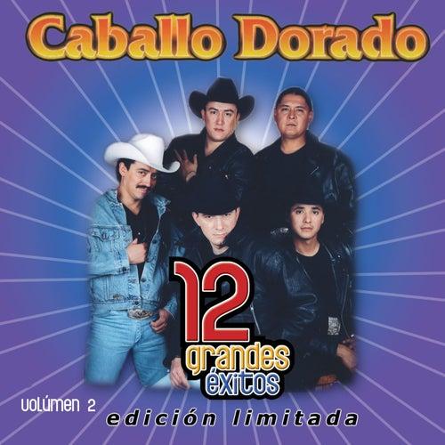 12 Grandes exitos Vol. 2 by Caballo Dorado