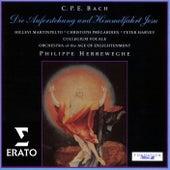 C.P.E. Bach: Die Auferstehung und Himmelfahrt Jesu Wq 240 von Philippe Herreweghe